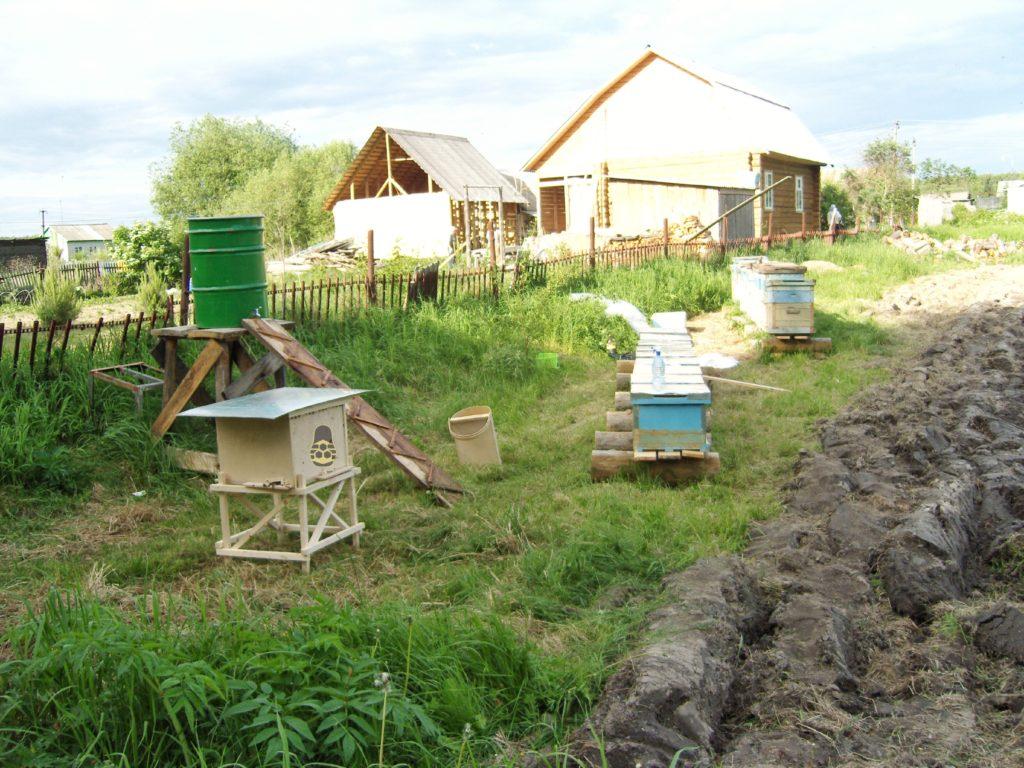 поилка для пчёл, сделана из бочки